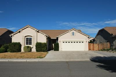 Fernley Single Family Home For Sale: 1317 Rouge River Rd