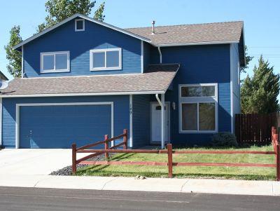 Fernley Single Family Home For Sale: 149 Desert Springs