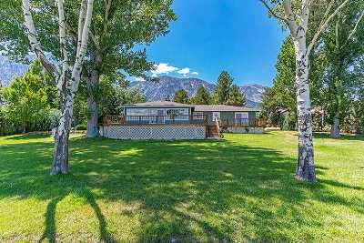 Gardnerville Single Family Home Active/Pending-Call: 741 Indian Trail
