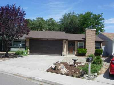 Carson City Single Family Home Price Reduced: 20 Granite Way