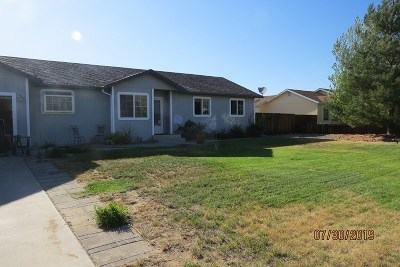Minden NV Single Family Home Active/Pending-Loan: $349,900