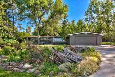 Reno Single Family Home For Sale: 3550 Lamay Ln