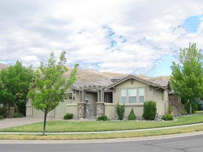 Single Family Home For Sale: 2195 Maple Leaf Trl