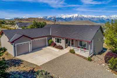 Gardnerville Single Family Home Active/Pending-Loan: 603 Stagecoach