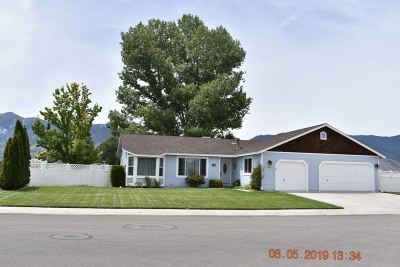 Minden NV Single Family Home Price Reduced: $485,000