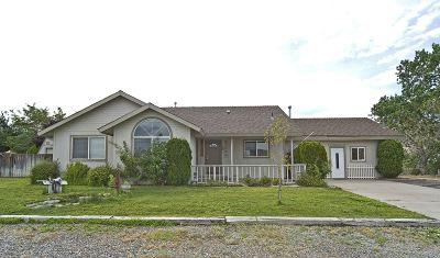 Carson City Single Family Home For Sale: 3753 Lyla Lane