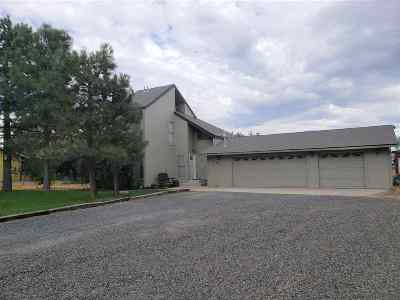 Minden NV Single Family Home For Sale: $399,000