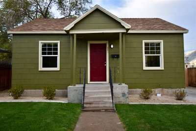 Reno Single Family Home For Sale: 651 Cheney St