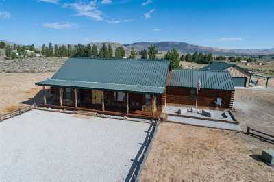 Reno Single Family Home For Sale: 14925 Dry Valley Rd