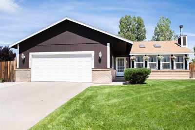 Gardnerville Single Family Home Active/Pending-Call: 1460 Mary Jo Dr