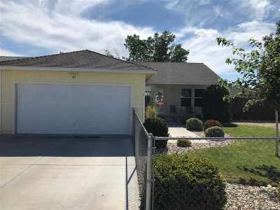 Fernley Single Family Home For Sale: 1255 Wadsworth Lane