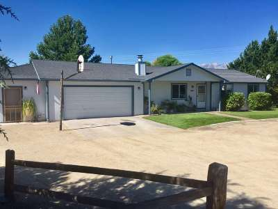 Gardnerville Single Family Home For Sale: 600 Mustang Lane