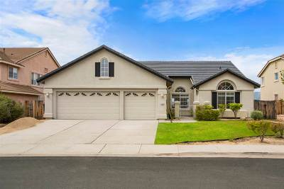 Washoe County Single Family Home For Sale: 2851 Sunline Drive