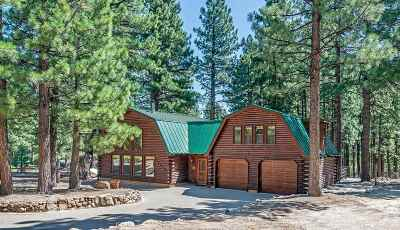 Washoe County Single Family Home For Sale: 16835 Evergreen Hills