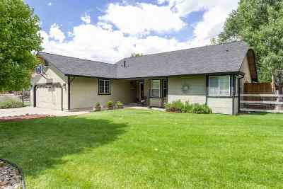 Gardnerville Single Family Home Active/Pending-House: 1974 Mule