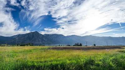 Gardnerville Residential Lots & Land For Sale: 870 Cordes Place