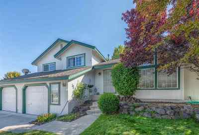 Carson City Single Family Home For Sale: 4267 Spring Dr