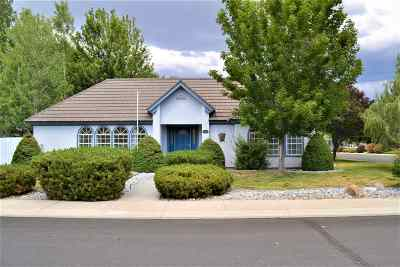 Minden NV Single Family Home For Sale: $659,000