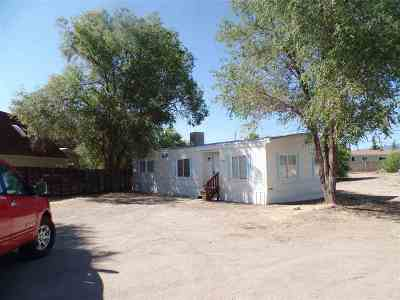 Reno Single Family Home For Sale: 17560 Thrush