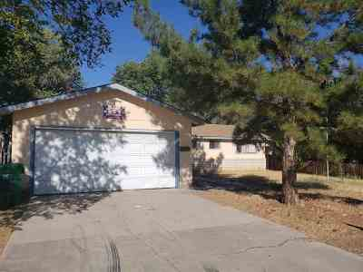 Carson City Single Family Home For Sale: 1308 Stanford