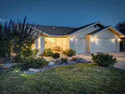 Reno Single Family Home For Sale: 2248 Pioneer