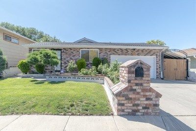 Washoe County Single Family Home For Sale: 1275 Clough Rd
