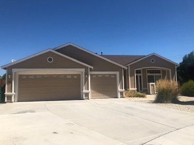 Fernley Single Family Home For Sale: 1066 Rimfield