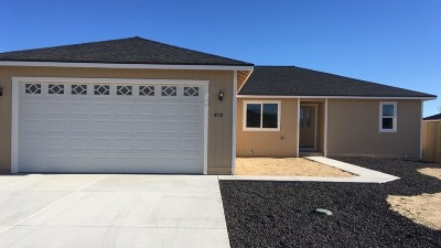 Fernley Single Family Home For Sale: 4519 Rutledge