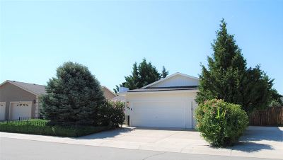 Fernley Single Family Home For Sale: 599 Vance Drive