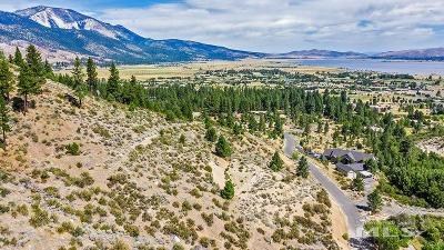 Washoe Valley Residential Lots & Land For Sale: Bryan Canyon Road