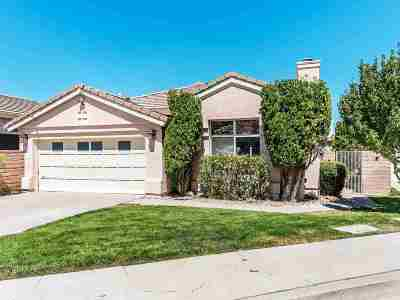 Reno Single Family Home For Sale: 2919 Mountain Springs Road