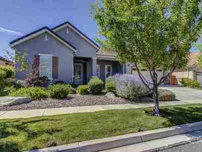 Washoe County Single Family Home For Sale: 9180 Heritage Ridge Ct