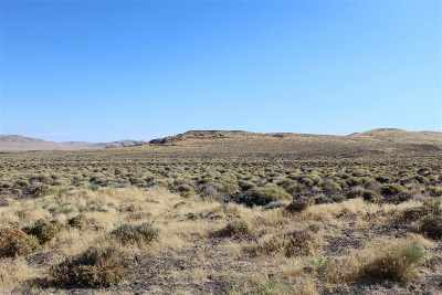 Fallon Residential Lots & Land For Sale: 00702158 & 00702159 Parcels Churchill County