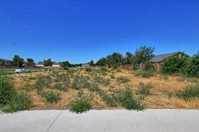 Fernley Residential Lots & Land For Sale: 5 Lots On Starlite Drive