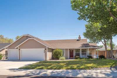 Fernley Single Family Home New: 549 Wedge Lane
