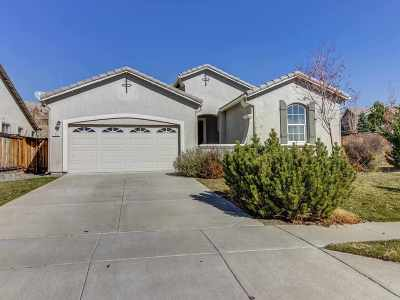 Washoe County Single Family Home For Sale: 7701 Moose River Ct.