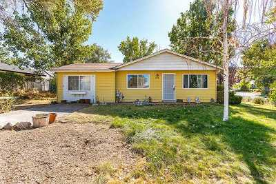 Reno Single Family Home New: 450 E Patrician Drive