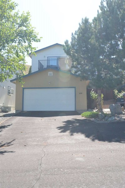 Carson City Condo/Townhouse For Sale: 1060 Spring Meadow