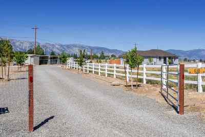 Gardnerville Single Family Home For Sale: 638 Derby Court