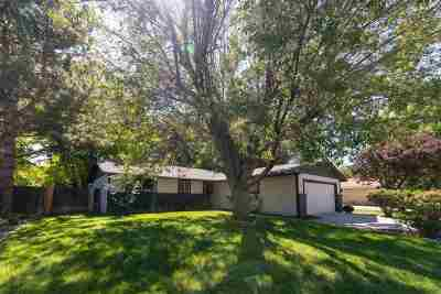 Reno Single Family Home For Sale: 2960 Bobby