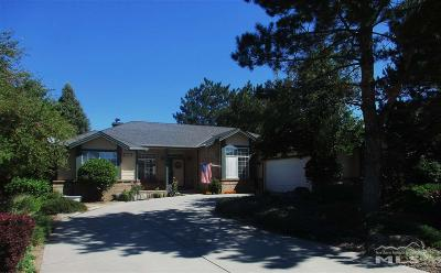 Gardnerville Single Family Home For Sale: 1228 Pleasantview Drive