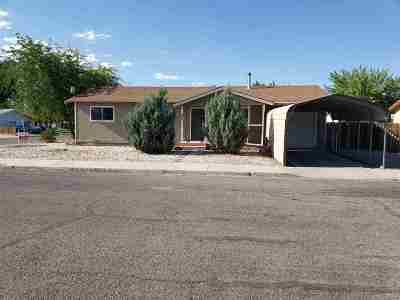 Yerington NV Single Family Home Active/Pending-Call: $159,900