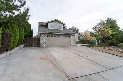 Reno Single Family Home For Sale: 6430 Stone Valley Dr.