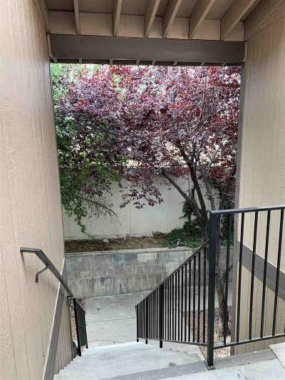 Reno Condo/Townhouse New: 2345 Tripp Drive, Unit #2 #2