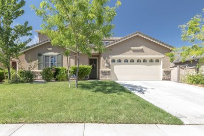 Reno Single Family Home For Sale: 10723 Amber Falls Drive