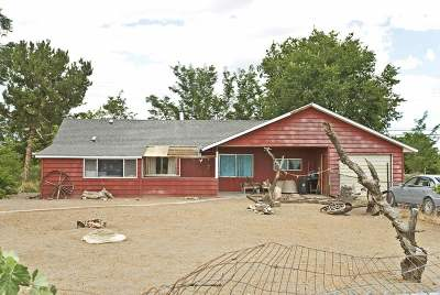 Fernley Single Family Home New: 2315 Farm District