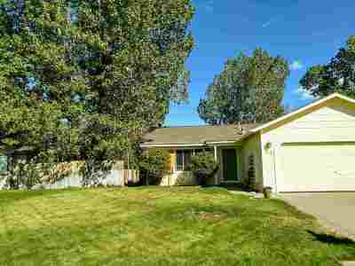 Gardnerville Single Family Home For Sale: 1322 Mary Jo