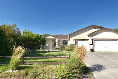 Washoe County Single Family Home For Sale: 3983 Kettle Rock Drive