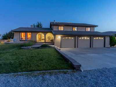 Washoe County Single Family Home For Sale: 10660 Plata Mesa Drive