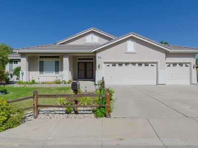 Reno Single Family Home For Sale: 6019 Clear Creek Dr